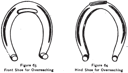 Front and hind horseshoes for overreaching