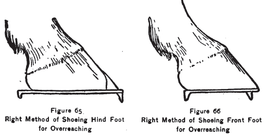 How to shoe for overreaching