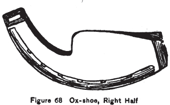 Ox-shoe, right half